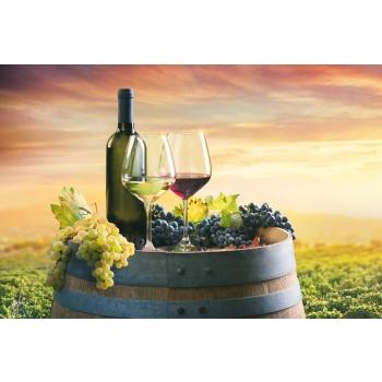 249822-1751x1167-red-and-white-wine.jpg